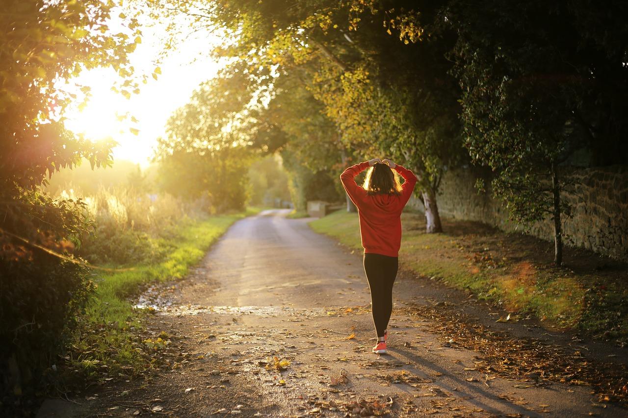 【メンタルにいい習慣】→ 朝の日光浴と30分の散歩/かなり幸せ